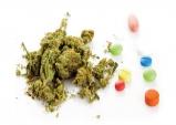 [북한돋보기] 통일 한반도에서 벌어질지도 모를 '마약과의 전쟁'